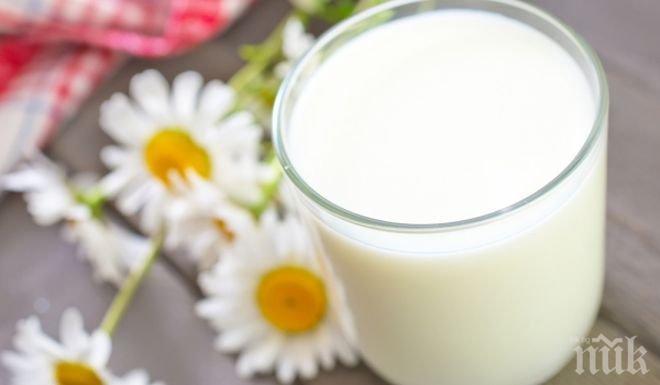 Защита на сърцето с чаша мляко.